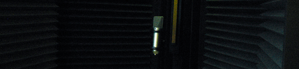 Photo close up of a mic in a vocal iso booth